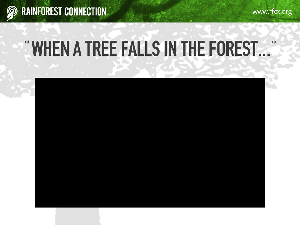 "4 ""WHEN A TREE FALLS IN THE FOREST…"" www.rfcx.o..."