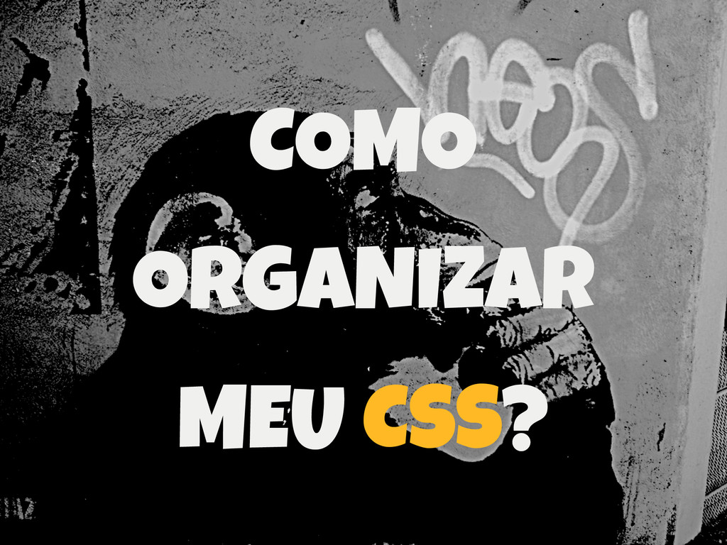 COMO ORGANIZAR MEU CSS?