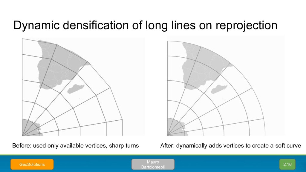 Dynamic densification of long lines on reprojec...