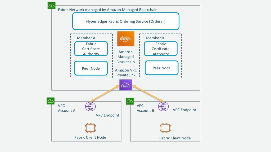 Fabric Network managed by Amazon Managed Blockc...