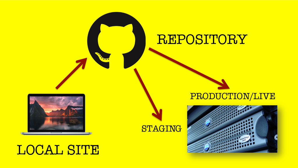 REPOSITORY