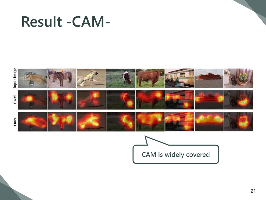 Result -CAM- 21 CAM is widely covered