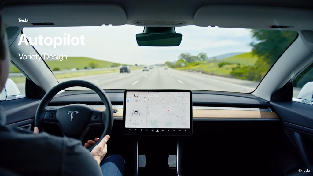 Tesla Autopilot ©Tesla Variety Design