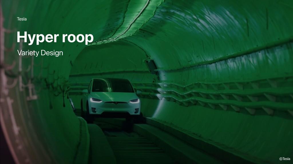 Tesla Hyper roop ©Tesla Variety Design
