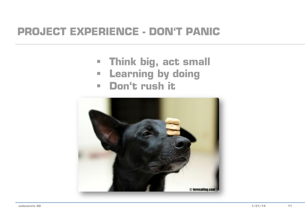 codecentric AG PROJECT EXPERIENCE - DON'T PANIC...
