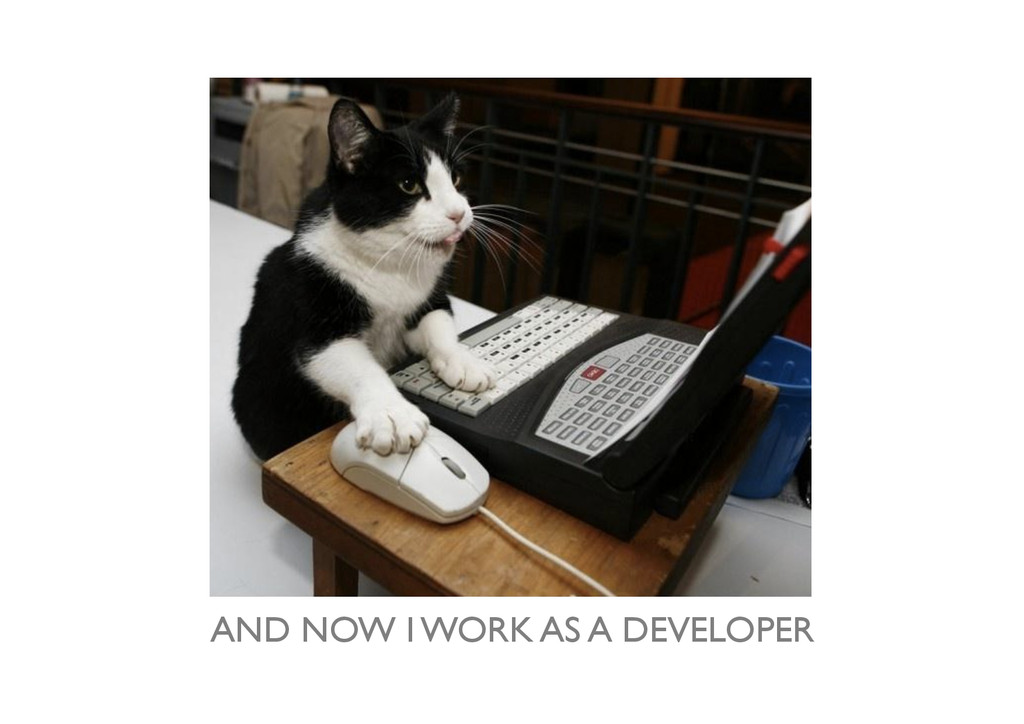 AND NOW I WORK AS A DEVELOPER