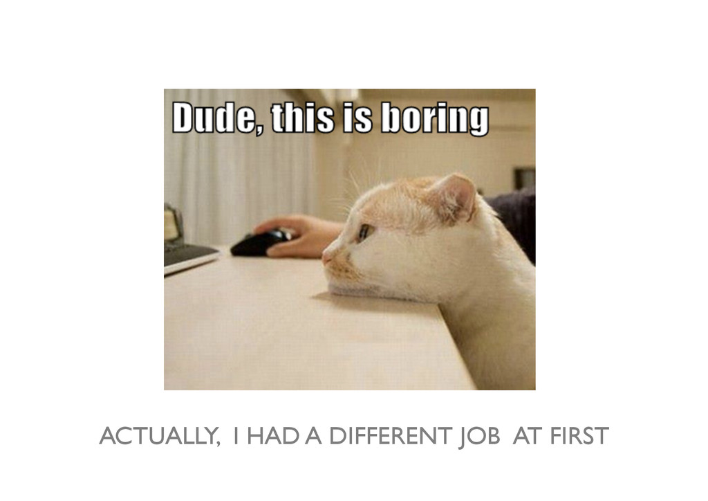 ACTUALLY, I HAD A DIFFERENT JOB AT FIRST
