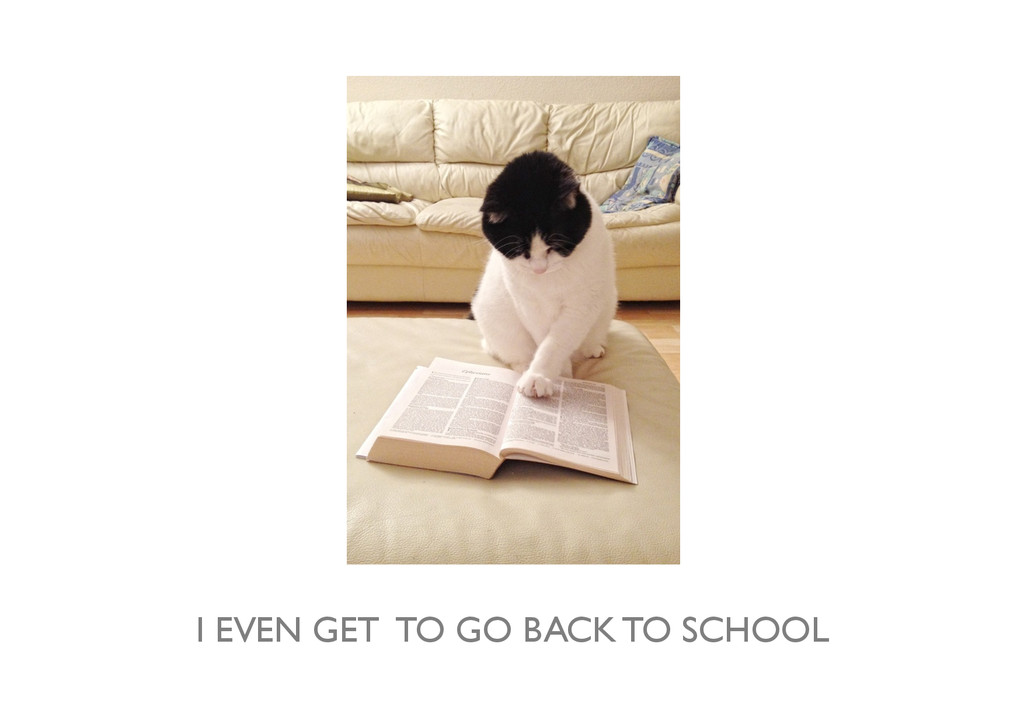 I EVEN GET TO GO BACK TO SCHOOL