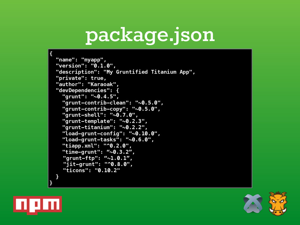 package.json {