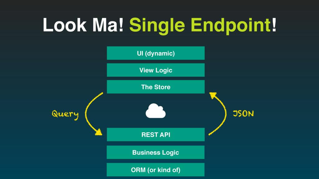 Look Ma! Single Endpoint! View Logic UI (dynami...