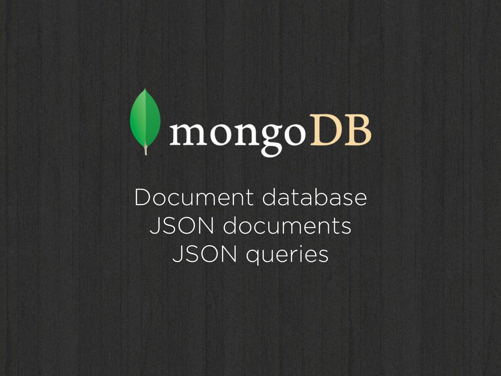 Document database JSON documents JSON queries