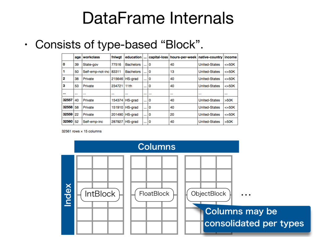 "DataFrame Internals • Consists of type-based ""B..."