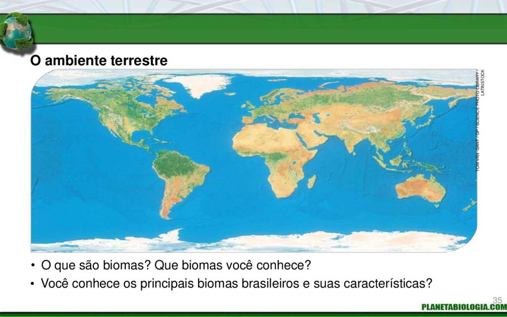 O ambiente terrestre • O que são biomas? Que bi...