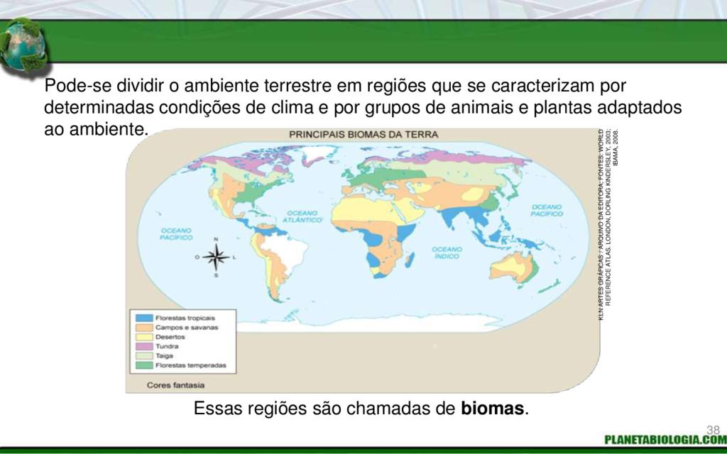 Pode-se dividir o ambiente terrestre em regiões...