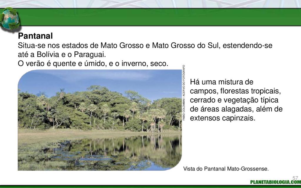 Pantanal Há uma mistura de campos, florestas tr...
