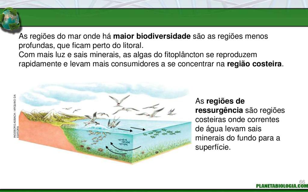As regiões do mar onde há maior biodiversidade ...