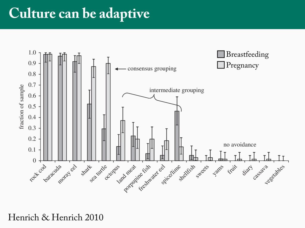 Henrich & Henrich 2010 Culture can be adaptive ...