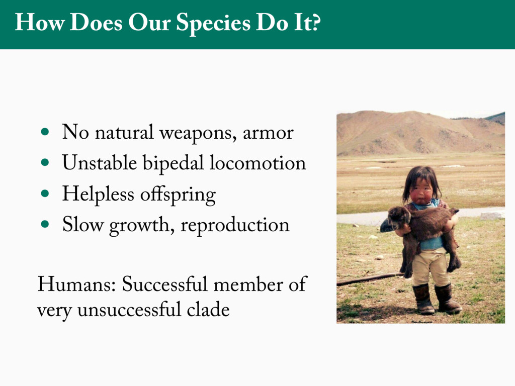 How Does Our Species Do It? • No natural weapon...