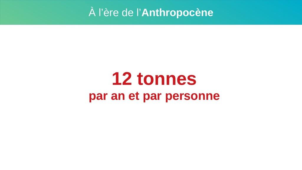 À l'ère de l'Anthropocène 12 tonnes par an et p...