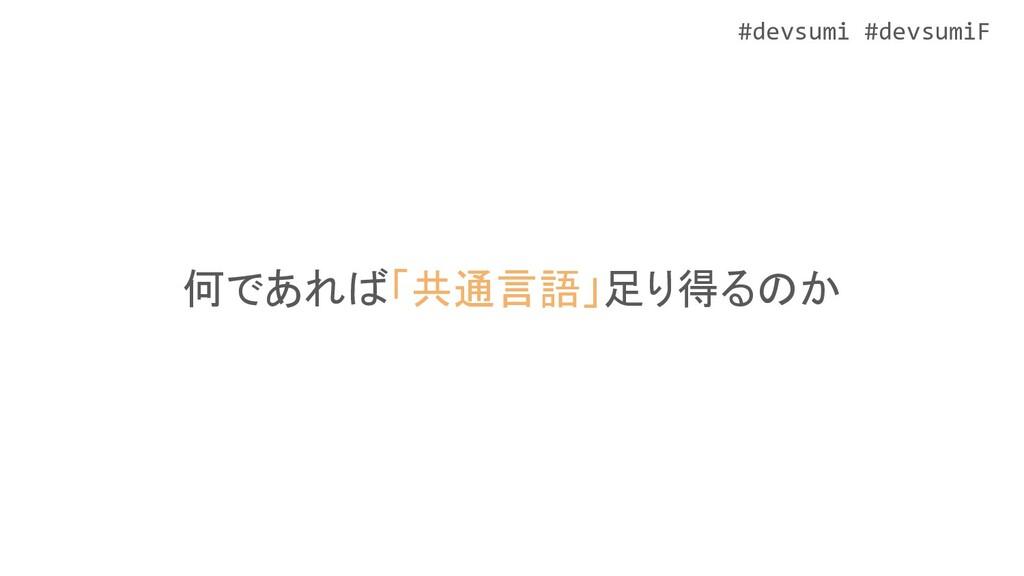 #devsumi #devsumiF 何であれば「共通言語」足り得るのか