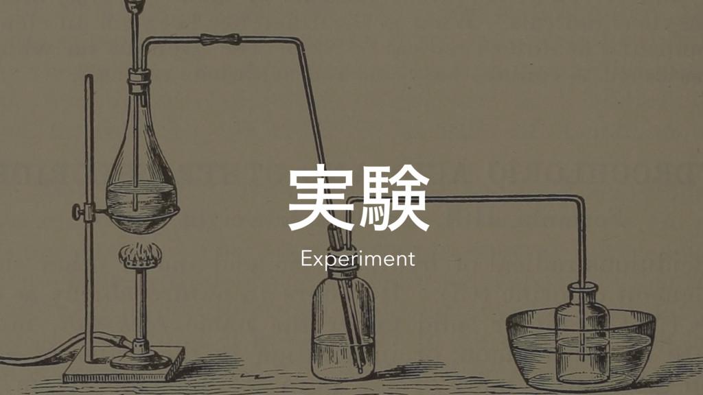 ࣮ݧ Experiment