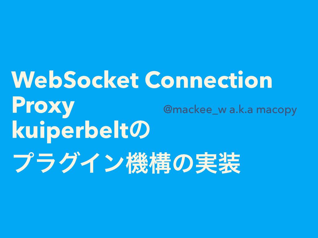WebSocket Connection Proxy kuiperbeltͷ ϓϥάΠϯػߏͷ...