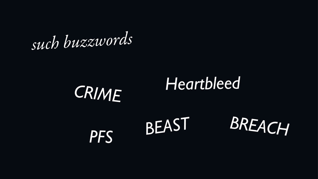 such buzzwords CRIME BEAST Heartbleed BREACH PFS