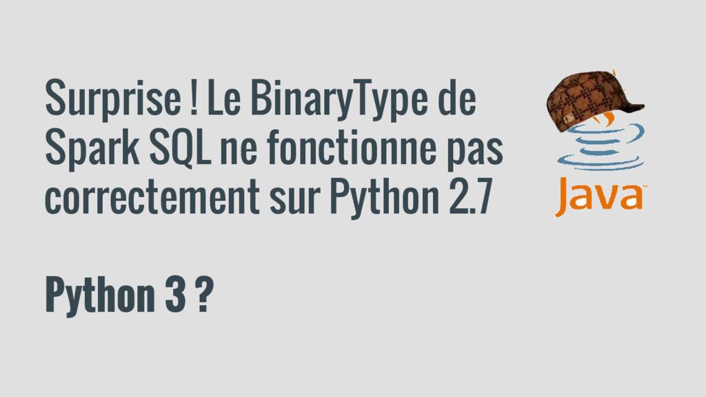 Surprise ! Le BinaryType de Spark SQL ne foncti...