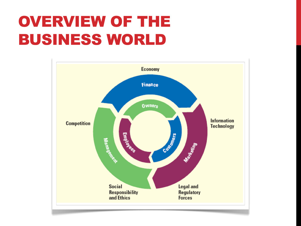 OVERVIEW OF THE BUSINESS WORLD