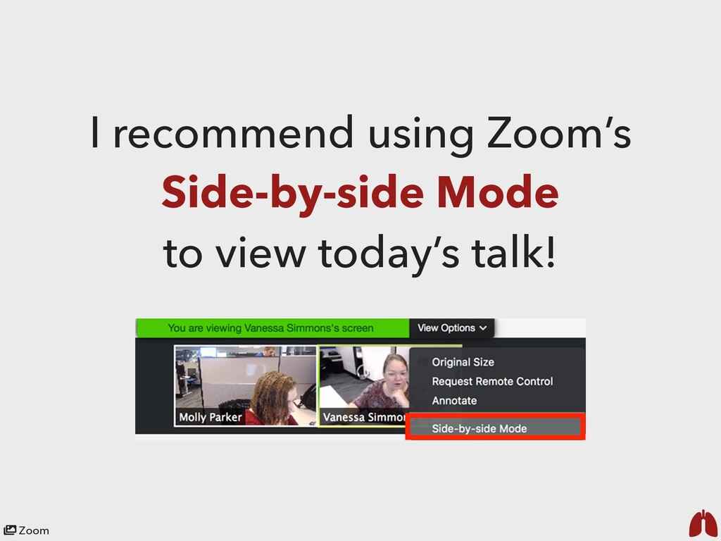 Zoom I recommend using Zoom's Side-by-side Mode...