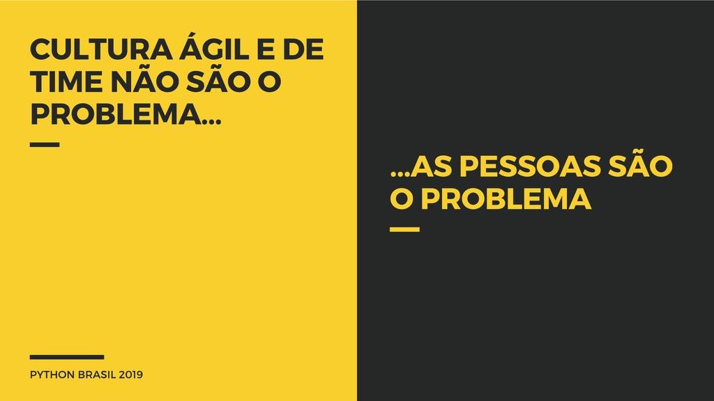 PYTHON BRASIL 2019 CULTURA ÁGIL E DE TIME NÃO S...