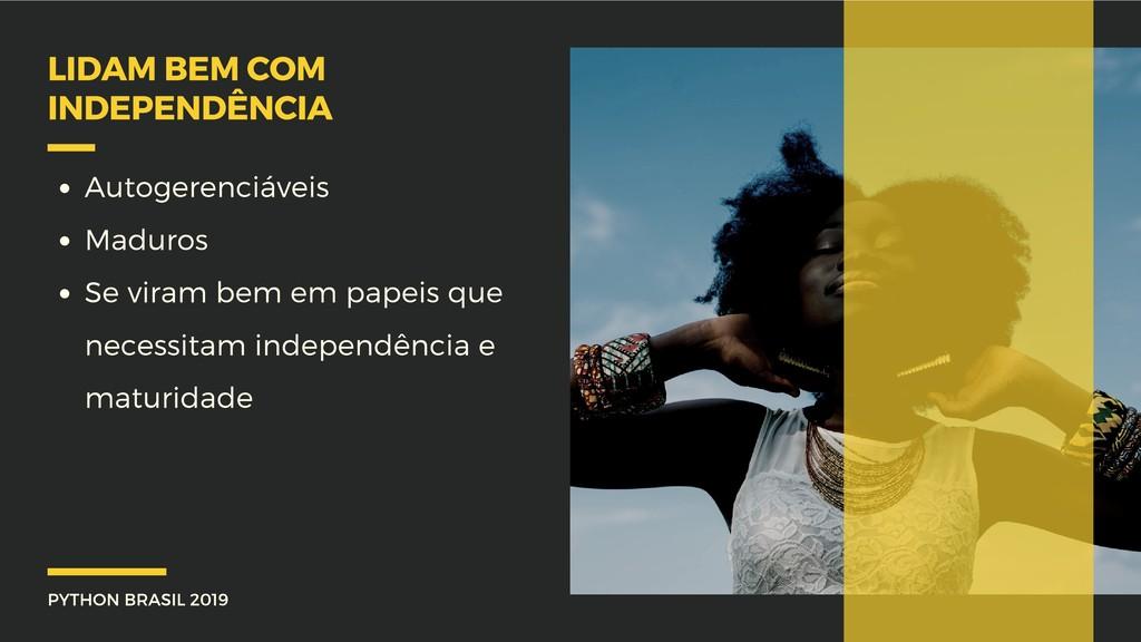 PYTHON BRASIL 2019 LIDAM BEM COM INDEPENDÊNCIA ...
