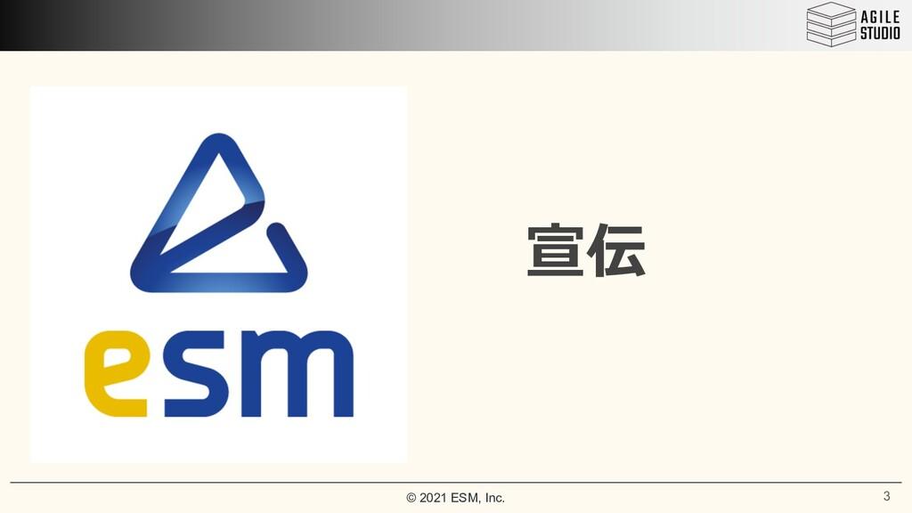 © 2021 ESM, Inc. 宣伝 3