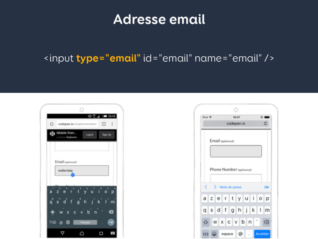 "Adresse email <input type=""email"" id=""email"" na..."