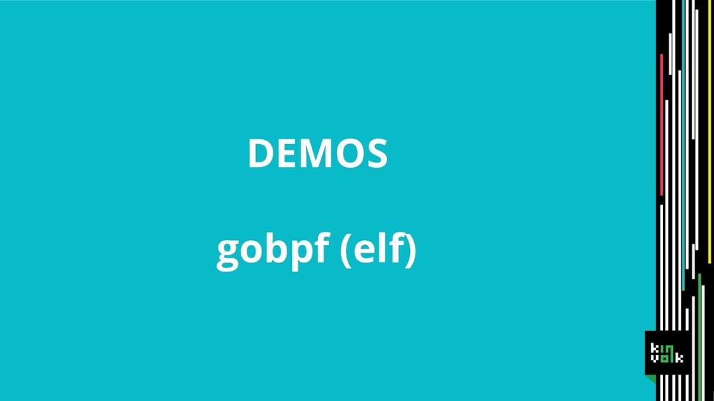 DEMOS gobpf (elf)