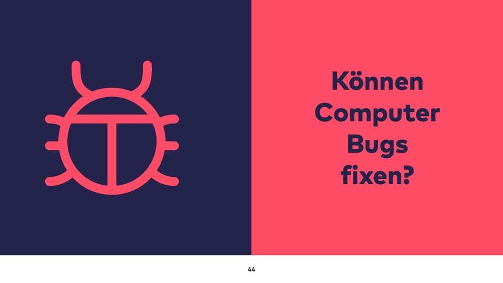 44 Können Computer Bugs fixen?