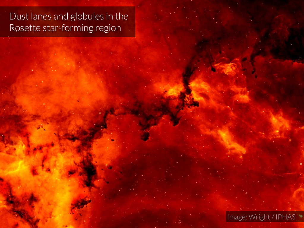 Dust lanes and globules in the Rosette star-for...