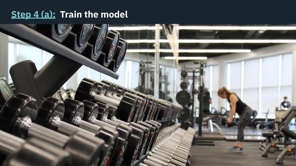 Step 4 (a): Train the model