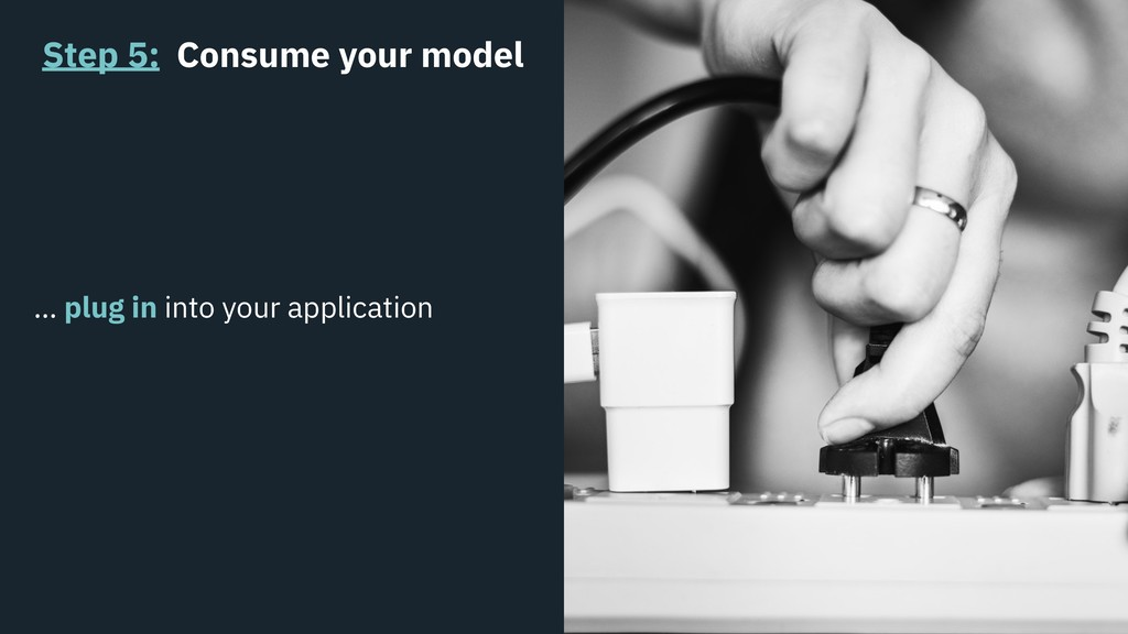 Step 5: Consume your model … plug in into your ...