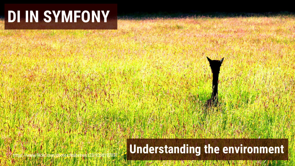 DI IN SYMFONY Understanding the environment htt...