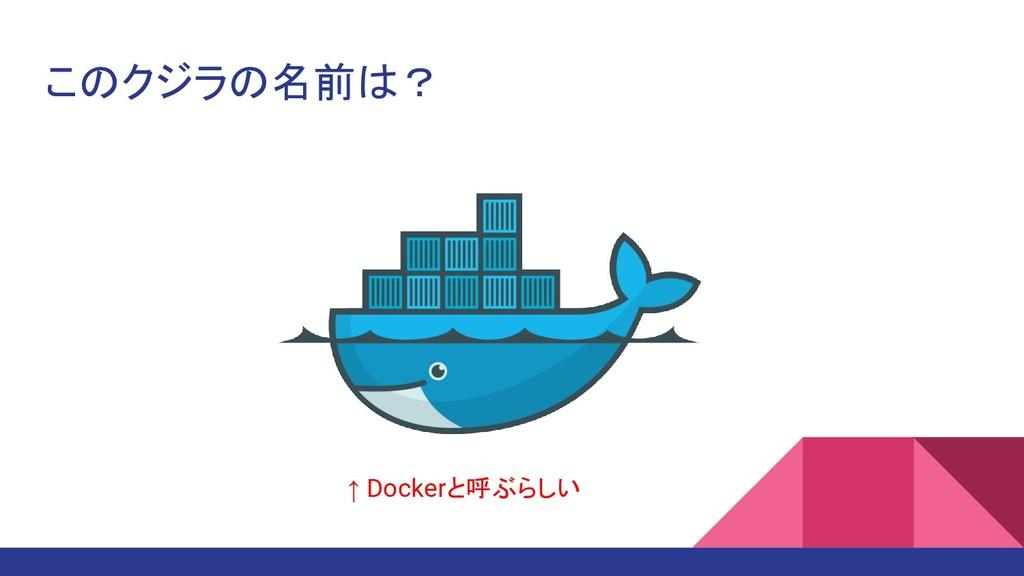 このクジラの名前は? ↑ Dockerと呼ぶらしい