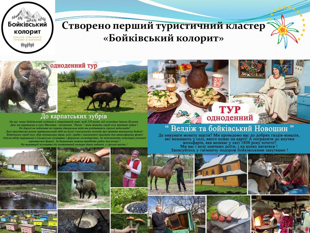 Cтворено перший туристичний кластер «Бойківськи...