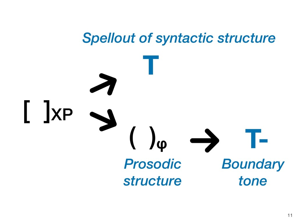 !11 [ ]XP Spellout of syntactic structure T ( )...