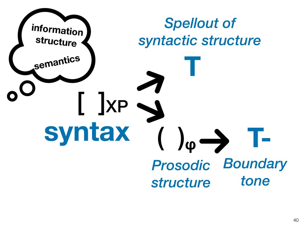 !40 [ ]XP Spellout of syntactic structure T ( )...
