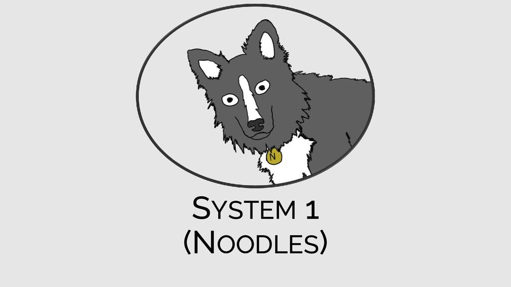 SYSTEM 1 (NOODLES)