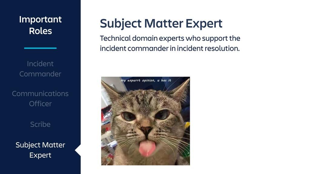 Subject Matter Expert Technical domain experts ...