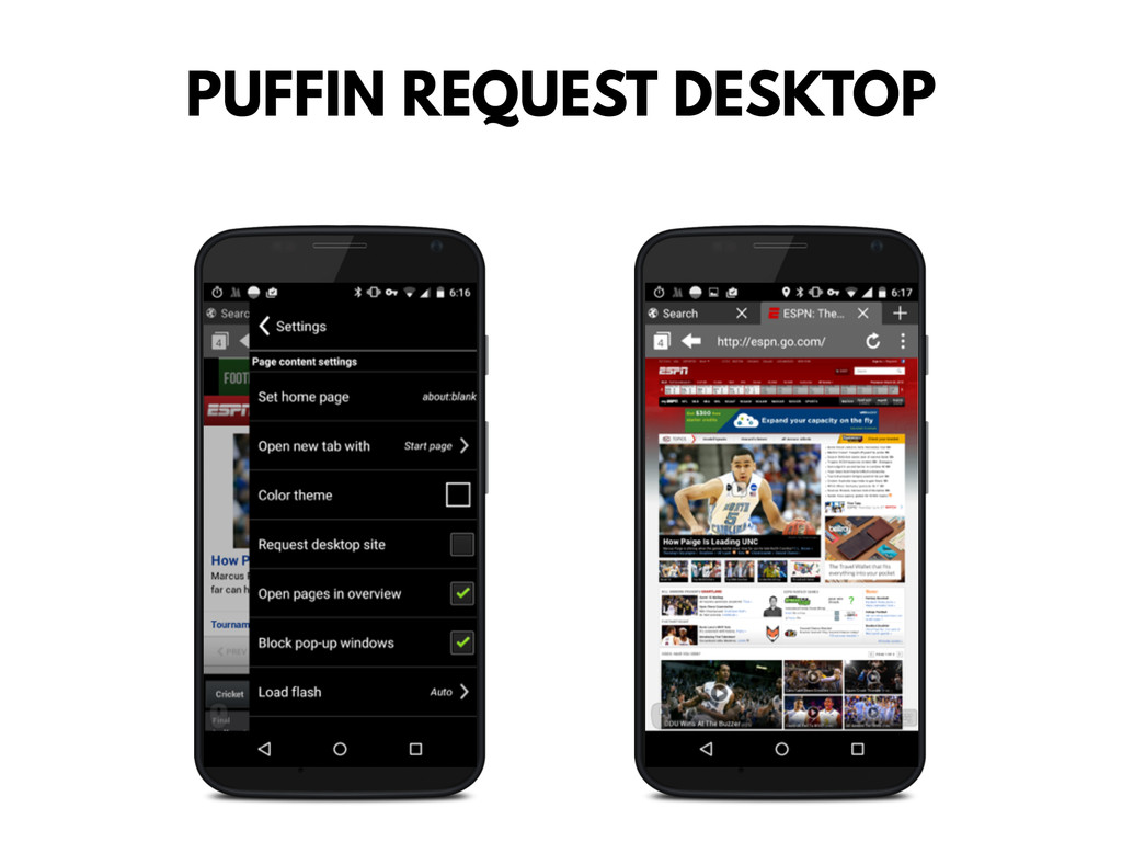 PUFFIN REQUEST DESKTOP
