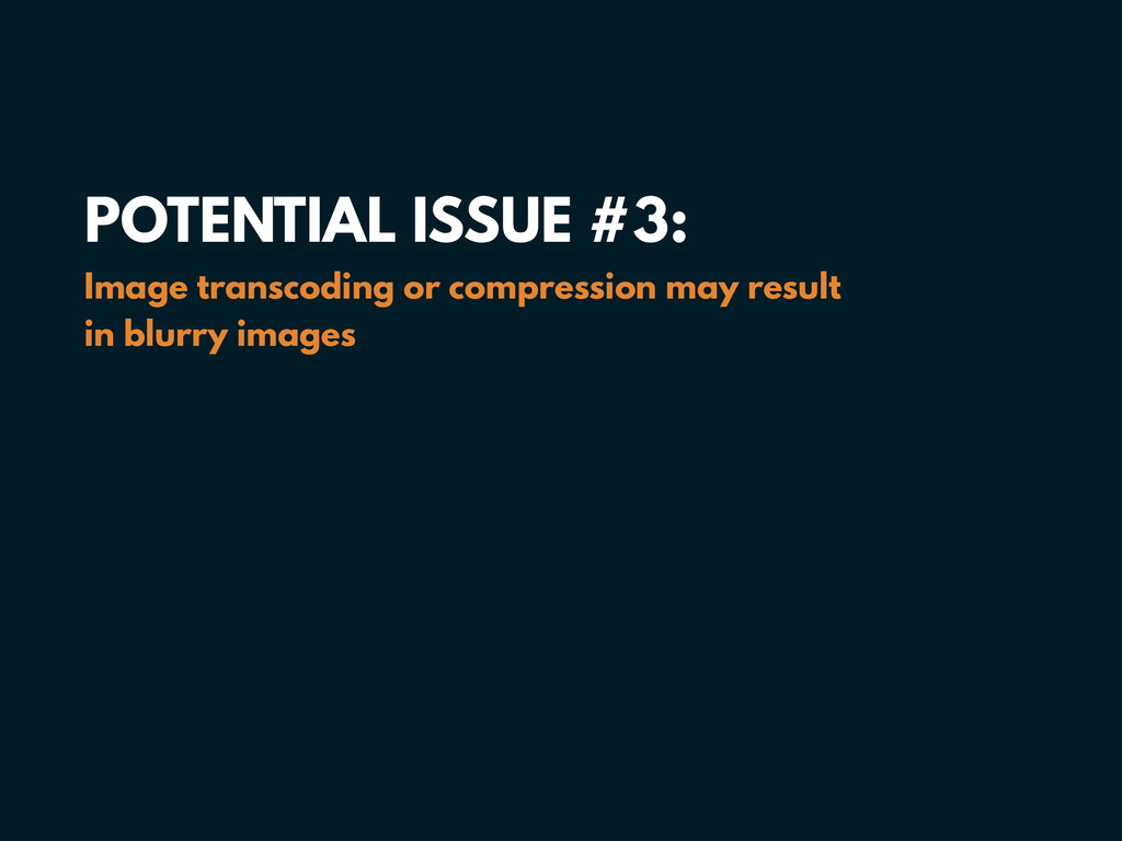 POTENTIAL ISSUE #3: