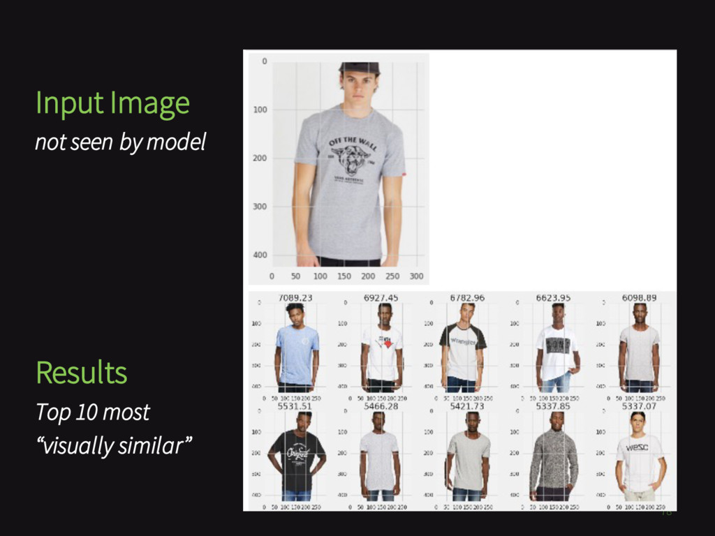 78 Input Image not seen by model Results Top 10...