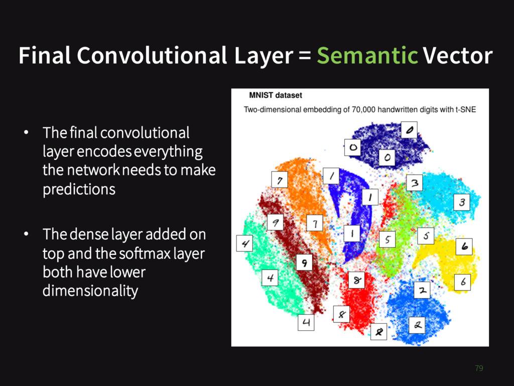 79 Final Convolutional Layer = Semantic Vector ...